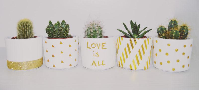 cactus noel 800x362 - 15 idées de cadeaux à réaliser soi-même